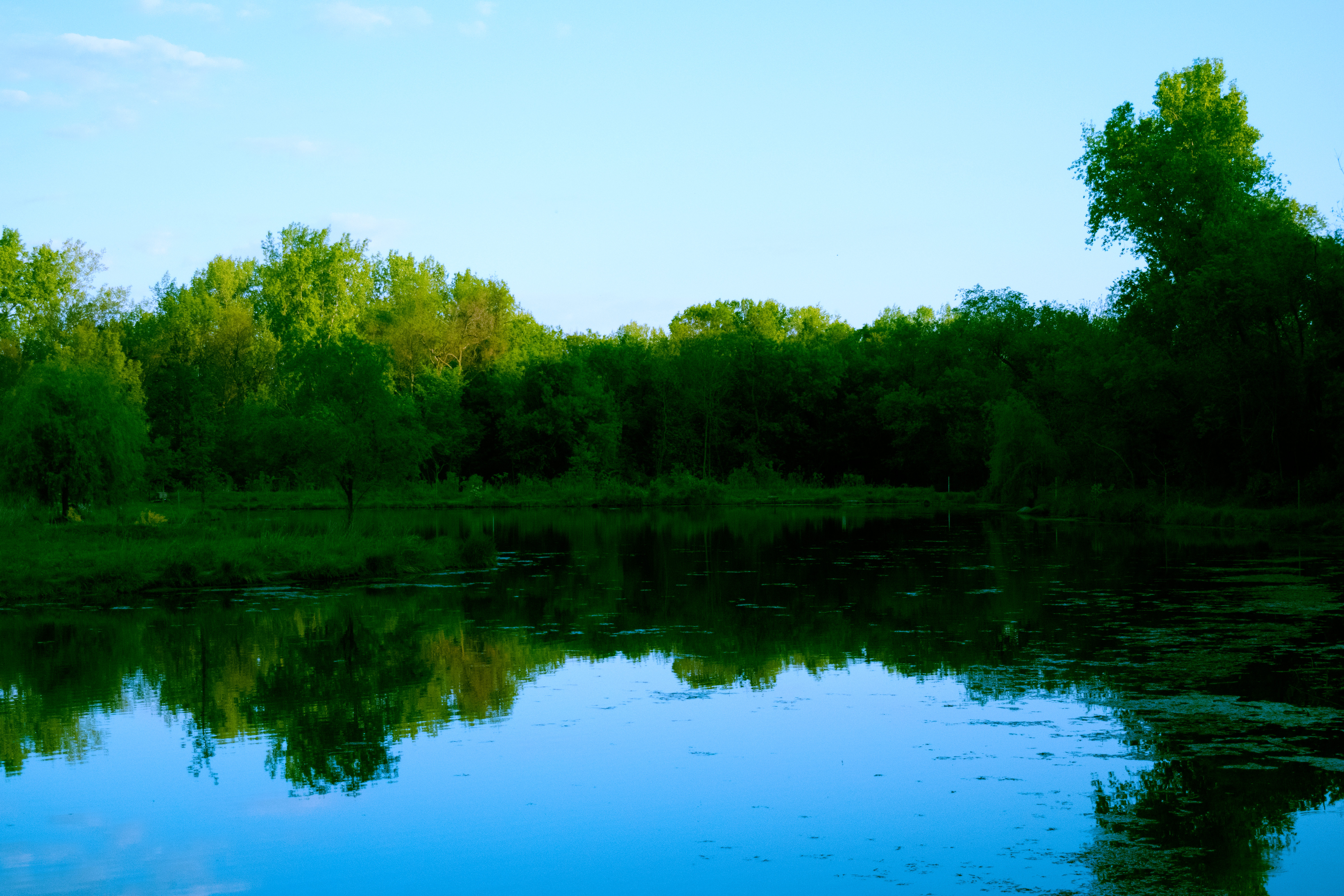 Nature Photo Friday: Quarry Hill Pond