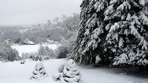 A Winter Scene of Rochester